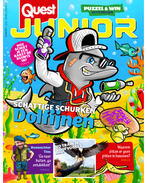 Quest Junior