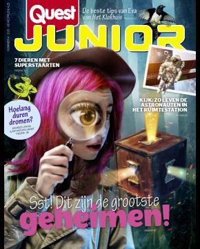 Quest Junior